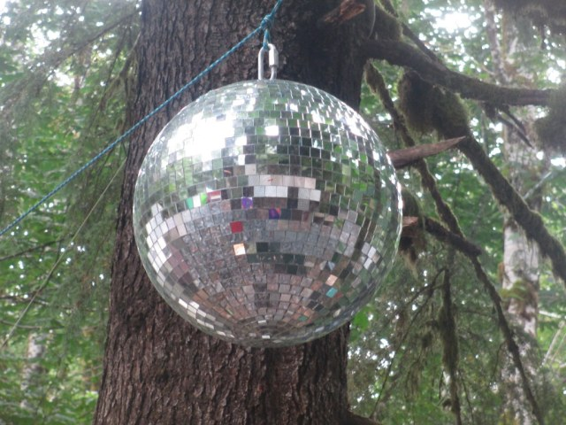 image of disco ball hanging from a tree in a forest.